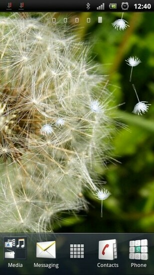 Download Blowing Dandelion Live Wallpaper for your Android phone