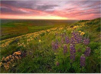 Download Natural Scenery Desktop Wallpapers PowerPoint E