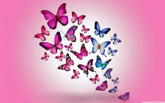 Butterflies 4K HD Desktop Wallpaper for 4K Ultra HD TV Wide
