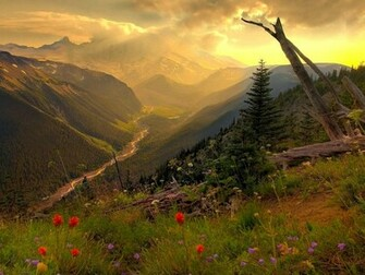 nice nature wallpapers new vista nature wallpapers istartedsomething