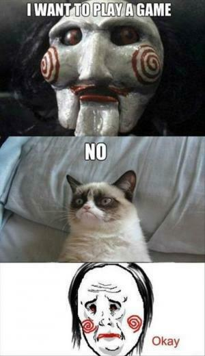 Most Funny Grumpy Cat Photos   Whitec0de Magazine