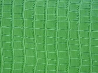 Fake Alligator Skin Texture by FantasyStock