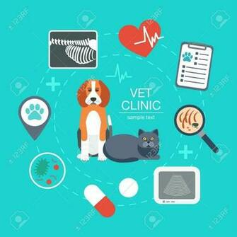 Banner Background Poster Concept With Veterinary Icons Vet