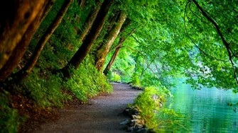 Nature Wallpapers HD Landscape Pictures One HD Wallpaper Pictures