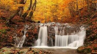 Fall Wallpapers For Desktop 8TBLG3Ljpg   Picseriocom