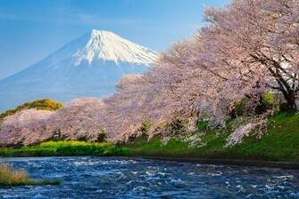 Mount Fuji Wallpaper 19   1920 X 1285 stmednet