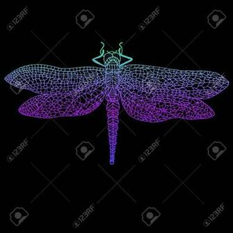 Dragonfly Beautiful Winged Insect Bright Blue Violet Color