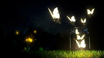 fantasy art lights grass butterfly glass night wallpaper