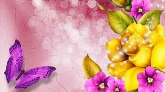 Colorful Butterfly wallpaper   1405132