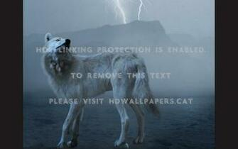 Wolf Lighting anime lightning wolf lightning wolf viewing