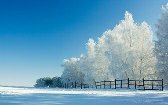Christmas Winter Wallpapers   7763