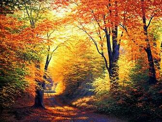 Autumn Wallpapers HD Autumn Wallpapers HD