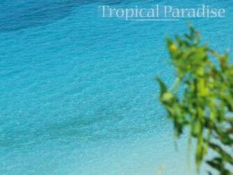 free caribbean wallpaper