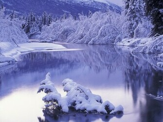 Winter Desktop Wallpaper   wwwwallpapers in hdcom