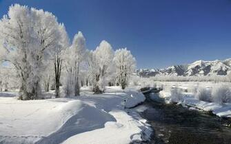 Beautiful Winter Wallpapers Beauty of Winter season Nature