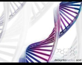 dna 1280x1024 wallpaper High Quality WallpapersHigh Definition