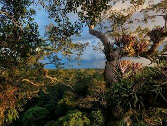 Picture    Ecuador Wallpaper    National Geographic Photo of the Day