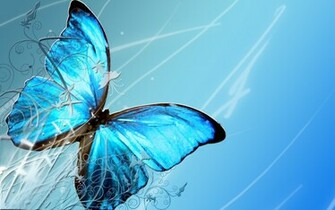 Blue Butterfly Wallpapers wallpaper Blue Butterfly Wallpapers hd