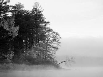 Foggy Lake Black And White Nature