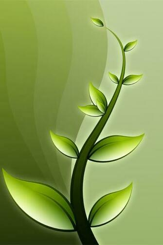 iphone4 wallpaper 640x960 retina flower 7