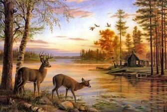deer pictures deer wallpapers deer wallpapers deer wallpapers deer