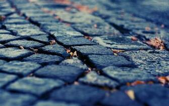Download Wallpaper pavement depth of field cobblestones fallen leaves