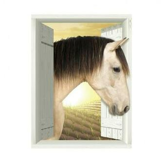 AMD7025 Horse Plain Removable Large Wallpaper Mural Lowes Canada