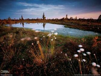 National Park Photo Latvia Wallpaper National Geographic