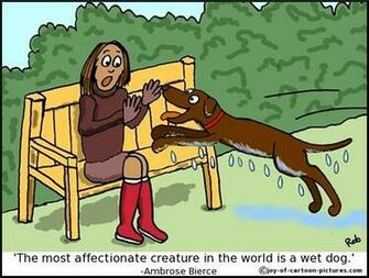 Labrador Cartoons Labrador Cartoon Funny Labrador Picture Labrador