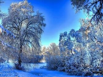 cute winter landscape wallpaper   ForWallpapercom