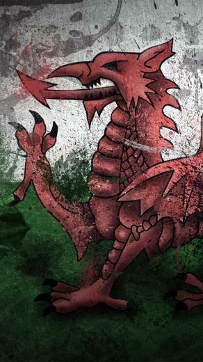 Download wallpaper 540x960 wales dragon symbol flag paints