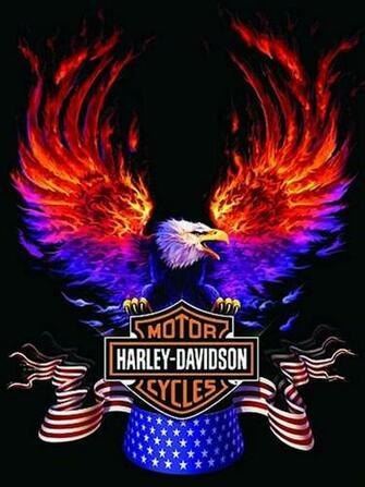 Harley Davidson Logo Wallpaper 6820 Hd Wallpapers in Logos   Imagesci
