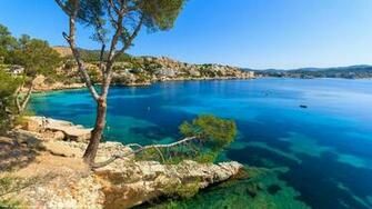 Palma Menorca tree blue sea coast houses Spain wallpaper