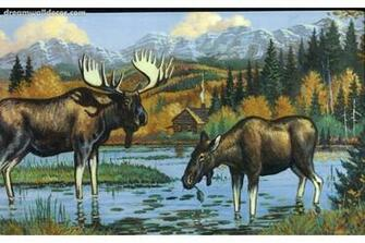 Black Moose Wallpaper Border