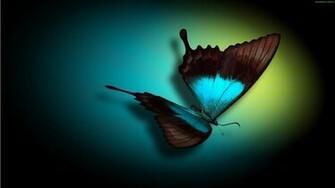 Teal Butterfly HD Wallpaper