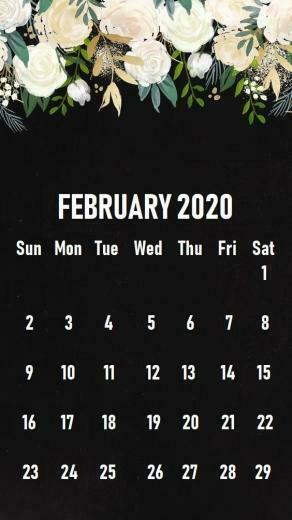 February 2020 iPhone Calendar Wallpaper in 2019 Calendar
