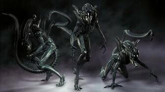 Xenomorph Alien Wallpaper 1920x1080 Xenomorph Alien Aliens