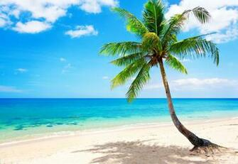 Tropical Beach Wallpaper Related Keywords amp Suggestions