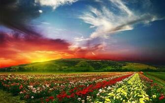 Spring Backgrounds   Wallpaper High Definition High Quality