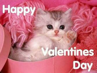 Show Your Pet Some Love This Valentines Day Veterinary Secrets