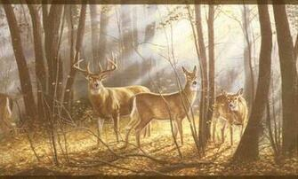 whitetail deer wallpaper border   weddingdressincom