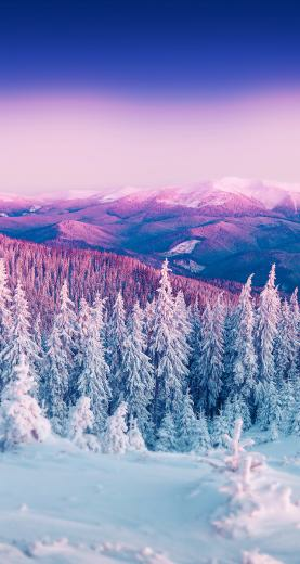 Omg I lovveee this so much in 2020 Landscape wallpaper Winter