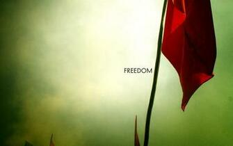 Freedom Wallpapers   8905