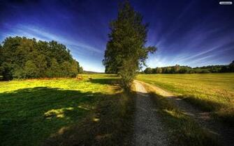 country wallpaper road background papel autumn