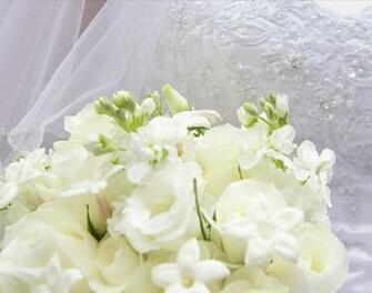 Wedding Background Popular Photography