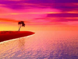 Purple Sunset On The Beach 8000 Hd Wallpapers in Beach   Imagescicom