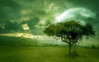 nature scenes amazing green nature pictures photos of green nature