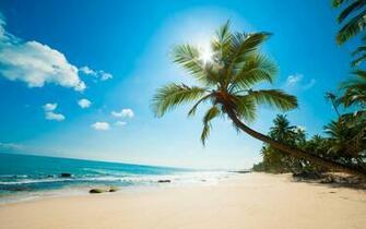 Caribbean Beach 1680 x 1050 Download Close
