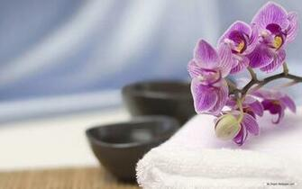 wallpaper   SPA 1 wallpaper   1440x900 wallpaper   Index 17