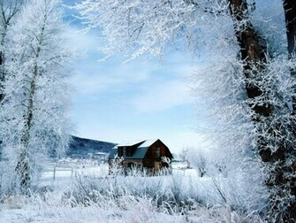 free winter winter winter winter winter